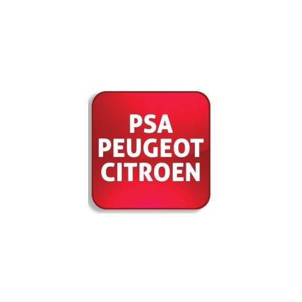 PSA Peugeot-Citroen