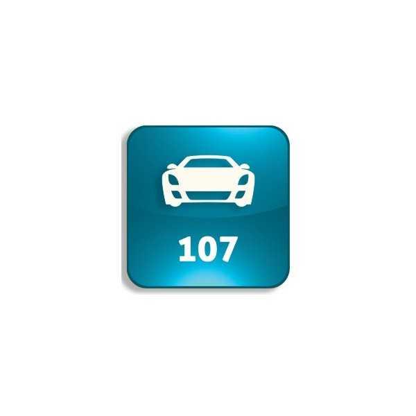 Peugeot - 107