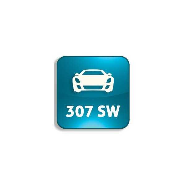 307 SW