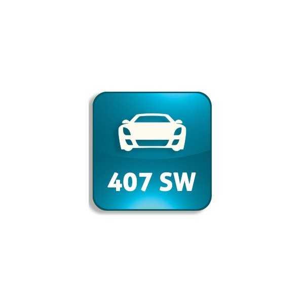 407 SW