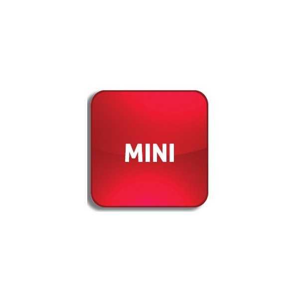 Télécommande voiture - Mini